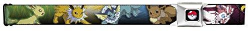 pokemon belt - 5