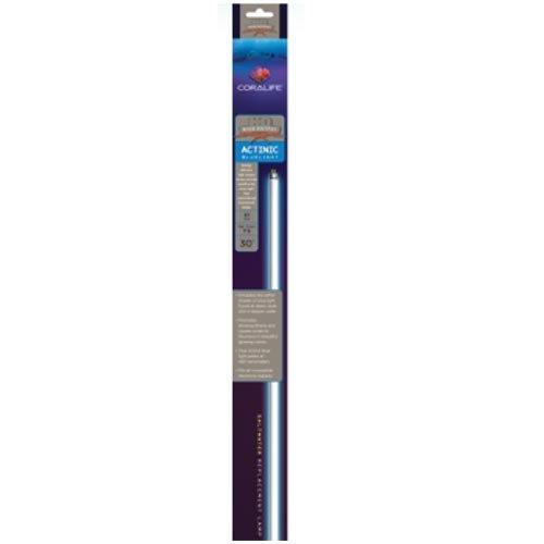 Coralife Energy Savers ACL54200 Colormax Mini Comp.Bulb, 20w