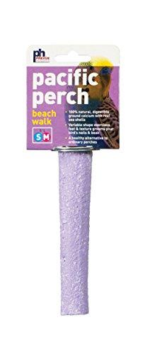 Prevue Pet Products Pacific Perch Beach Walk Small 1006