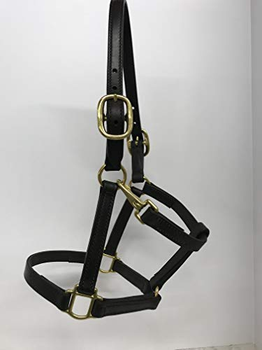 Tack Shack of Ocala Leather Small to Medium Pony Size Horse Halter, Brown with Solid Brass Hardware, Snap, Double Stitched