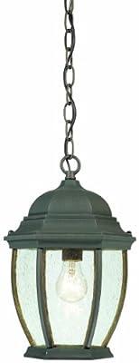 Thomas Lighting SL923363 Covington Outdoor Hanging Lantern, Painted Bronze