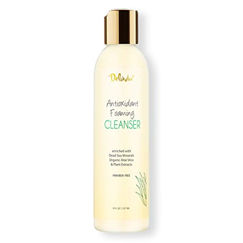 Antioxidant Gentle Foaming Facial Cleanser with Organic Aloe Vera, Dead Sea Salts and Plant Extracts. Hydrating Daily Cleansing for Men and -