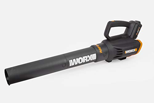 Buy what is the best leaf blower