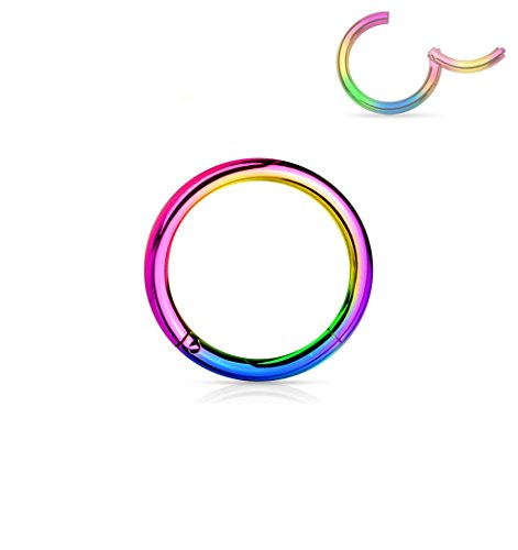 Forbidden Body Jewelry 16G 6mm Surgical Steel Hinged Easy Use Hassle Free Seamless Hoop Body Piercing Ring, Rainbow ()