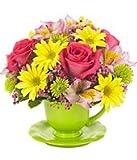 Bright Floral Teacup Bouquet