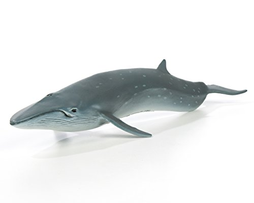 Safari Ltd. Sea Life - Sei Whale - Phthalate, Lead and BPA Free - For Ages 3+