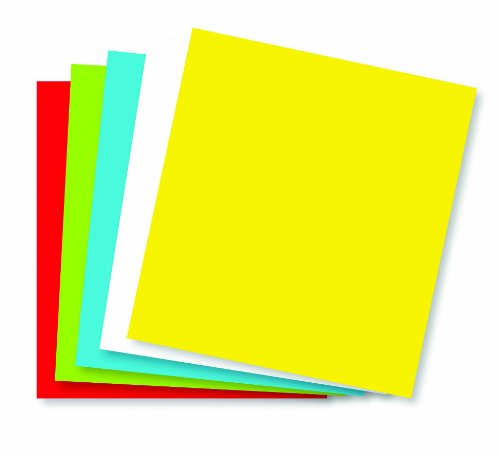 Wausau Astrobrights Premium Posterboard 5 Color Assortment, 80 lb, 22 X 28 Inches, 50 Per Carton (22057) by Wausau