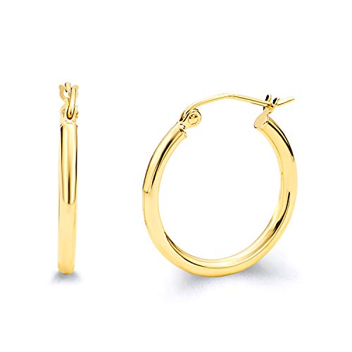 14k Yellow Gold 2mm Thickness Hinged Hoop Earrings (20 x 20 mm) ()