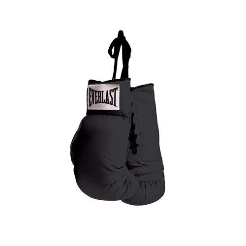 Everlast BLACK Autograph Boxing Gloves product image