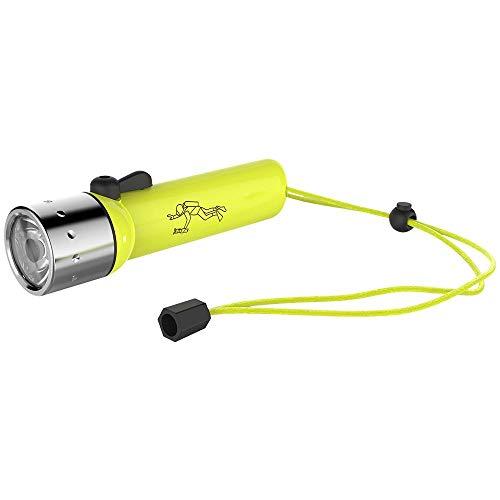 Lanterna Para Mergulho Ledlenser D14.2