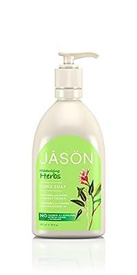 Jason Pure Natural Hand Soap, Moisturizing Herbs, 16 Ounce