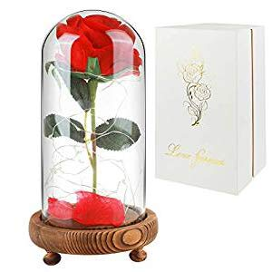 Childom Beauty and The Beast Rose, Roses Enchanted Red Silk Rose with Fallen Petals Led Fairy String Lights in A Dome, Gifts for Anniversary, Wedding (Natural Wood Base) 2