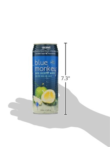 Blue Monkey 100% Coconut Water, 1.33-Pound (Pack of 24) by Blue Monkey (Image #4)