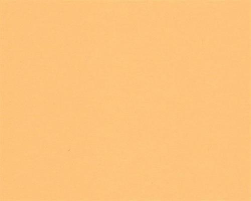 Flyer Newsletter Poster Faxeing/änge Wichtige Mitteilungen Warnhinweise Ordnungssysteme Memos 250 Blatt DIN A5 Chamois farbiges 160g//m/² Office-Papier Hochwertiges Spitzenpapier Copy Laser Inkjet