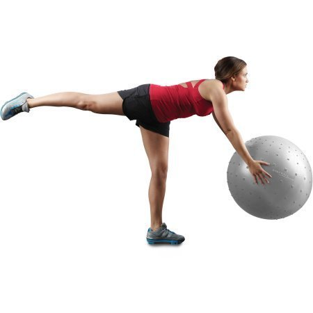 Gold's Gym 65 cm Anti-Burst Body Ball Constructed of Durable Performance Ball