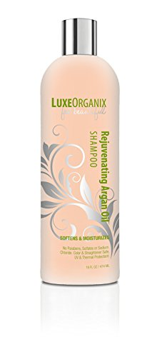 Chemically Treated Hair Shampoo (Moroccan Argan Oil Shampoo, SLS Sulfate Free + Safe for Color Treated, Keratin Treated Hair; Best for Damaged, Dry, Curly or Frizzy Hair - Thickening for Fine / Thin Hair (Made in USA) (16 oz))