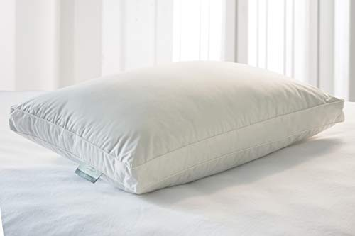 kathy ireland 240 Thread Count Unbleached Hybrid Blend Pillow with 2'' Gusset, Jumbo, White