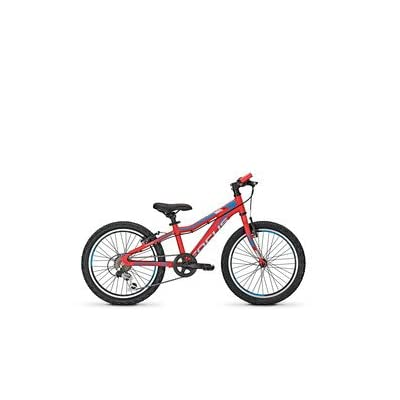 'Focus Raven Rookie red20 260 mm RH