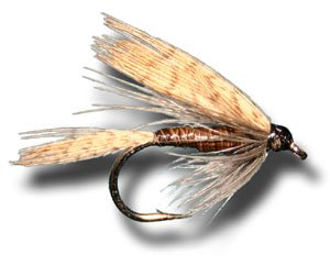 Quill Gordon Wet Fly Fishing Fly - Size 10 - 6 Pack