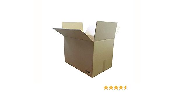 LOTE 10 CAJAS 35x25x20 DOBLE CANAL: Amazon.es: Oficina y papelería