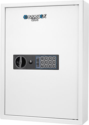 Hooks 100 Numbered (BARSKA 100 Key Cabinet Digital Wall Safe, White)