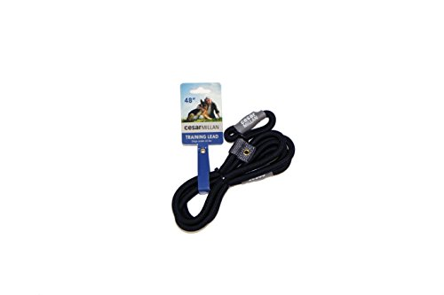 Cesar Millan Training Lead, Slip Collar Training Lead Gives You Greater Control and the Ability to Make Quick and Gentle Corrections - Large/Xlarge Size (Black Color) ()