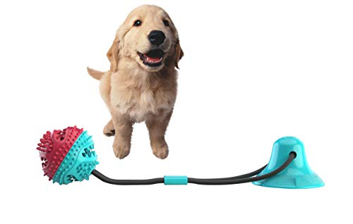 Pipi Dog Toy Chew Proof Rope Suction Cup with Ball Bite Interactive Jolly for Boredom Indestructible Squeaky Small Dog Aggressive Treat Food Dispensing Unique Gift