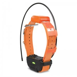 Dogtra Pathfinder TRX Tracking Only Collar in Orange