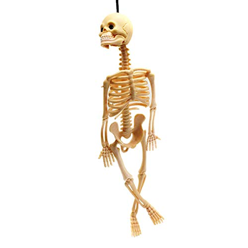 ガイコツ ハロウィン 恐ろしい飾り デコレーション 骸骨 模型 装飾 パーティーグッズ スケルトンモデルの頭骨 吊り下げ おもちゃ 小道具 2個セット (肌色)