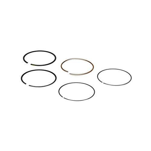 Briggs & Stratton 795431 Ring Set ()
