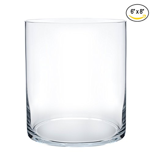 Royal Imports Flower Glass Vase Decorative Centerpiece For Home or Wedding by Cylinder Shape, 8