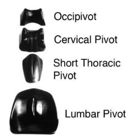 Pivotal Therapy Set - Set includes: Occipivot, Cervical, Short Thoracic and Standard Lumbar Pivot by Chattanooga