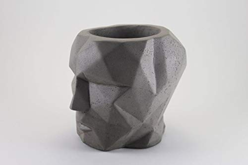regalo per colleghi succulente design regalo per insegnante handmade Vaso in cemento eco-friendly cactus regalo di natale TESTA