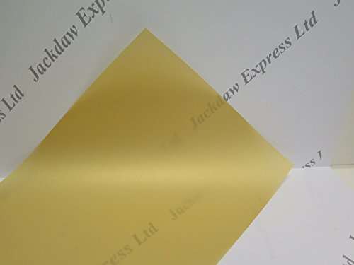 Jackdaw Express 20 x Vellum Coloured Translucent Tracing Paper A4 100gsm Choice of 20 Colours (Cream)