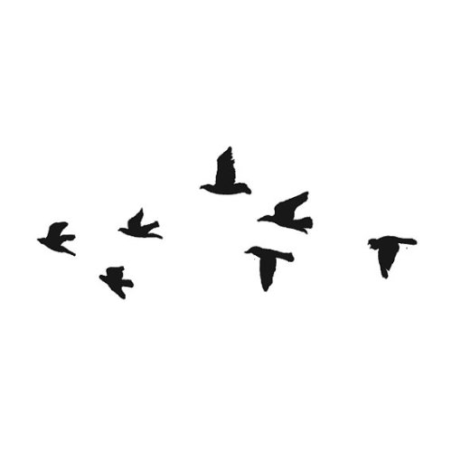 3d6239a44 Amazon.com : Tattify Birds Temporary Tattoo - Flock Yeah (Set of 2) - Other  Styles Available - Fashionable Temporary Tattoos : Temporary Tattoos Small  Birds ...
