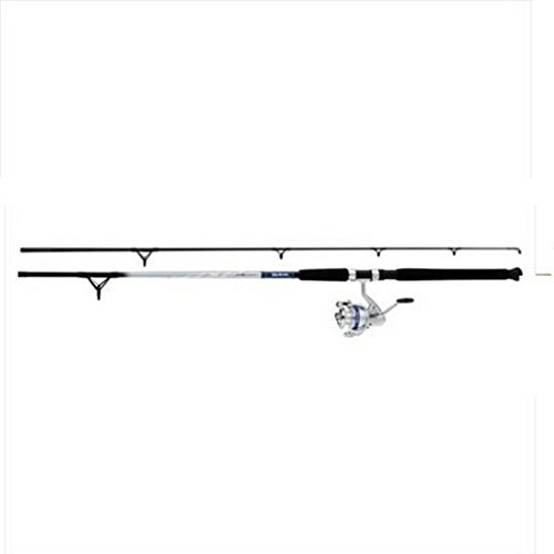 958773 Daiwa D-Wave Saltwater Spin Combo 3BB Sz50 9' 2pc Med