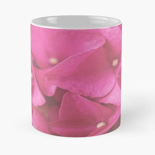 (Hydrangea Floral Art Dreamy Pink - 11 Oz Coffee Mugs Unique Ceramic Novelty Cup, The Best Gift For Holidays. )