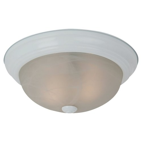 Ceiling Fixtures Led Lights in US - 4