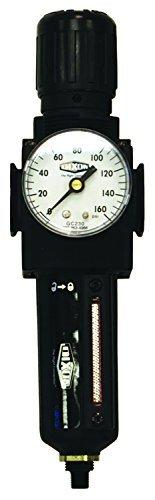 Dixon B73G-3MG-MB Series 1 Filter/Regulators, GC230 Manual Metal Bowl with Sight Glass, 3/8'' by Dixon Valve & Coupling