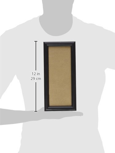 0.765-Inch Wide Craig Frames fw2bk 12 by 18-Inch Picture Frame Black Smooth Finish