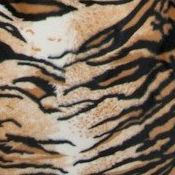 Tiger Bean Bag Chair Cover Swatch