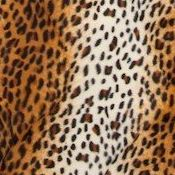 Leopard Bean Bag Chair Cover Swatch