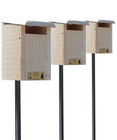 Coveside Sparrow-Resistant Bluebird House Package w/ Poles (Coveside Eastern Bluebird House)