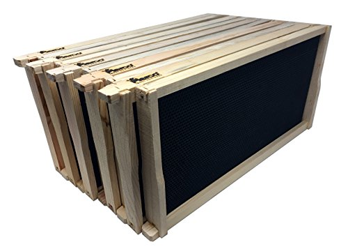 Pierco Inc. 10-Pack Assembled Commercial Frames with Waxed Black Pierco Foundation, 9-1/8-Inch by Pierco (Image #2)