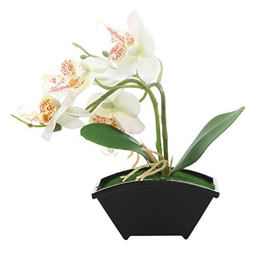 Miniature Artificial Silk White Phalaenopsis Orchid Flower Arrangement with Black Plastic Vase (Black Wire Vase)