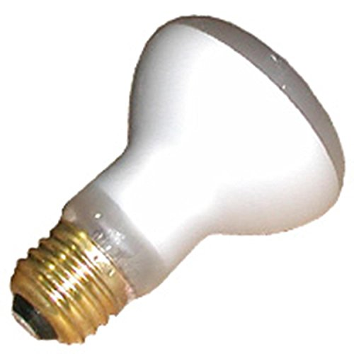 100 Watt Incandescent Flood Light Bulb in US - 2