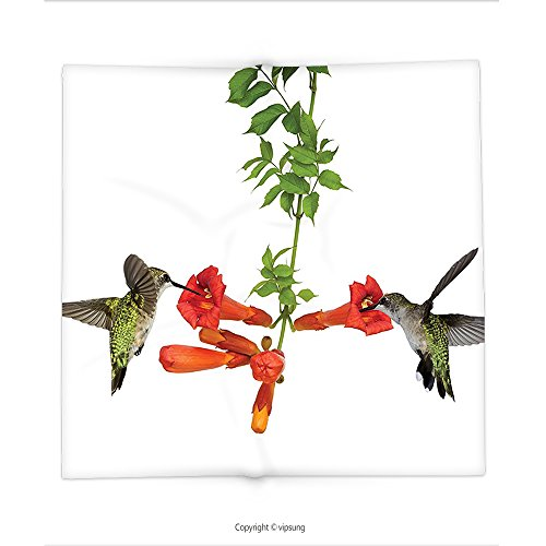 Custom printed Throw Blanket with Hummingbirds Decorations Collection Two Hummingbirds Sip Nectar From A Trumpet Vine Blossoms Summertime Super soft and Cozy Fleece - Card Get Nectar