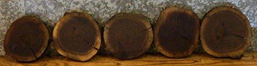 10- Natural Edge Thin Cut Black Walnut Rounds/Log Sliced Value Pack 35000 T: 1''D: 9 1/8'' - 35000 Sliced Log