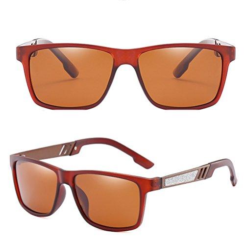 Hommes Couleurs de Zhhlaixing D'usage Lunettes Polarisées Adapte Tea de Dans des Style Sunglasses de Classique Verres Le Différentes Soleil Confort Nez wwF4qvnU