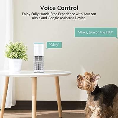 Enchufe Inteligente WiFi Smart Plug Control remoto ZOOZEE Toma de corriente inalámbrica para iOS Aplicación de Android Compatible con Google Home ...